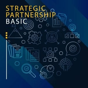 STRATEGIC PARTNERSHIP BASIC